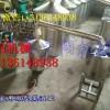 天阳新酿酒设备批发  多功能粮食酒自酿酒