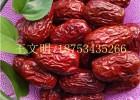 山东专业新疆红枣批发厂家