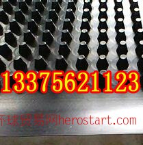 大庆市塑料排水板供应,阻根刺排水板销售