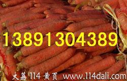 陕西萝卜基地红萝卜产地胡萝卜批发胡萝卜价格行情