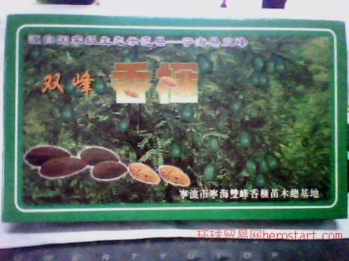 宁海双峰香榧子礼盒装