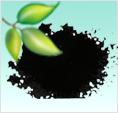 云南华仑天玺牌净水活性炭|水处理活性炭|饮用水粉末活性炭