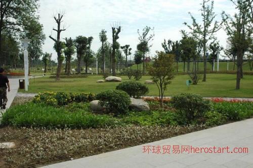 承接小区、厂区、庭院绿化、喷泉假山设计施工4图