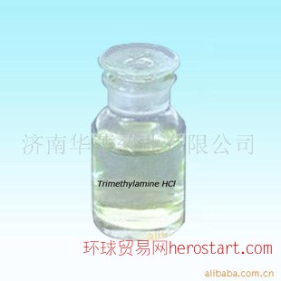 三甲胺盐酸盐 A17318