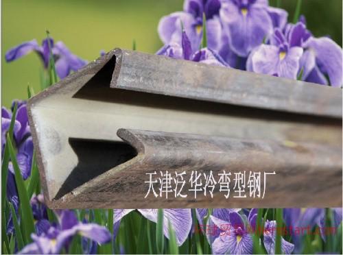 天津C型钢图片C型钢加工+C型钢厂家