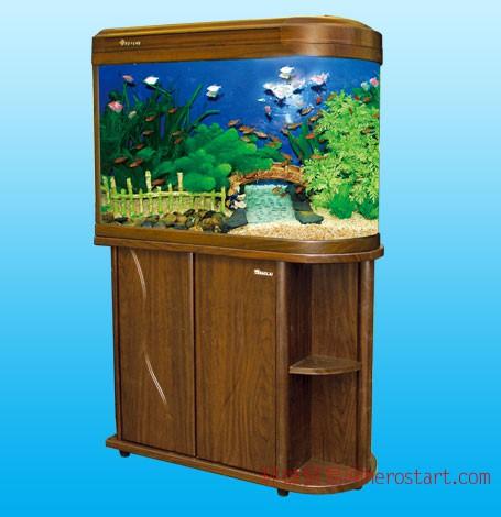 龙岩专业上门清洗鱼缸,护理鱼缸,批发鱼缸,批发花边鱼缸,批发小鱼缸