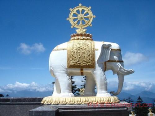 石雕象汉白玉石象,石雕大象,盛世有象等各种造型石雕大象,石雕动物龙凤大鹏,大象骏马,宝瓶鹿鹤等石雕动物
