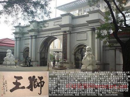 中国狮,天安门狮,石狮子,京狮港狮