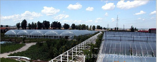 广西花奔 蔬菜PE阳光板温室大棚 能耐10年 耐高温透光率