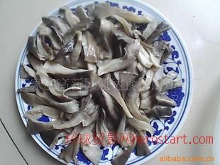 盐渍平菇 石家庄 盐渍 盐渍平菇