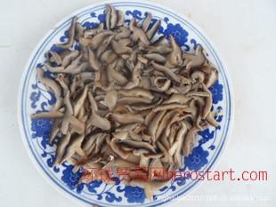 价格实惠 特级腌渍平菇 通达腌渍平菇 供应腌渍平菇