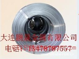 大连文胸钢丝线 文胸钢丝线 矩形弹簧线 扁钢丝 方钢丝 不锈钢异形钢丝