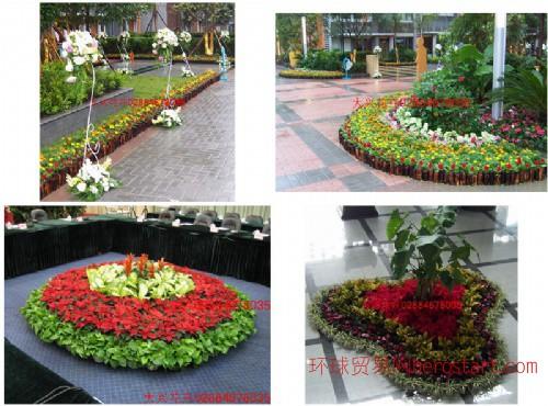 成都植物租赁,成都植物出租,成都花卉出租,成都花卉租赁