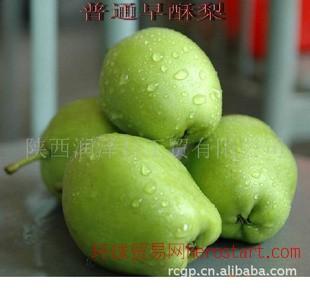 西安市区团购陕西早酥梨水果