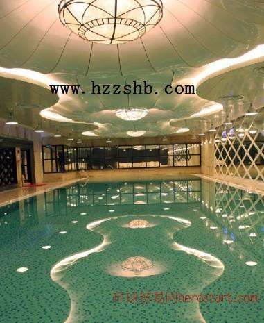 游泳池水处理/游泳池水处理公司/游泳池水处理价格/游泳池水处理设备/游泳池水处理工程