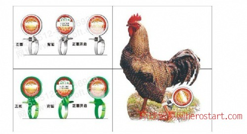 溯源家禽脚环土鸡脚环 产品 作用 解析