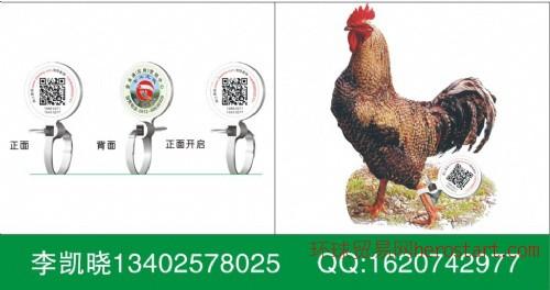 二维码家禽溯源脚环、土鸡、土鸭追溯脚环、电子脚环加工