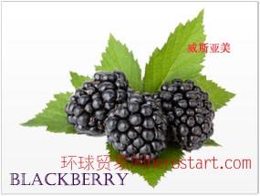 美国加州原产 黑莓  Blackberry 纯鲜浓缩果汁 美国工厂直销 直运
