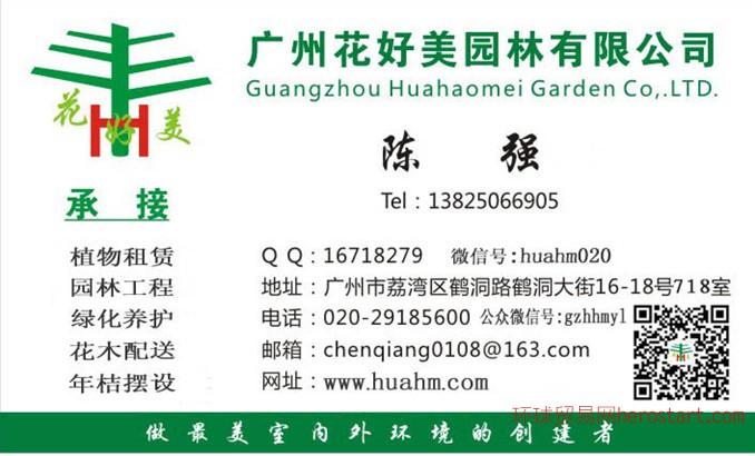 广州园区修剪、绿化植物维护