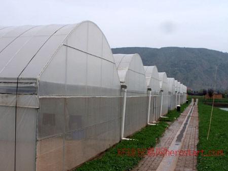 龙岩温室大棚