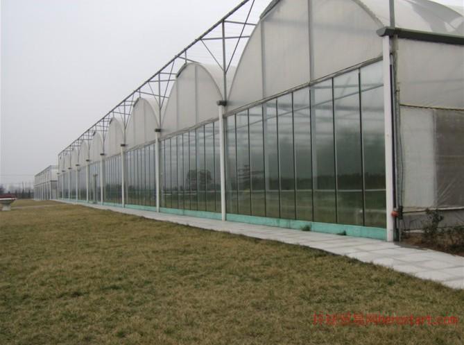 潮州连栋蔬菜大棚温室