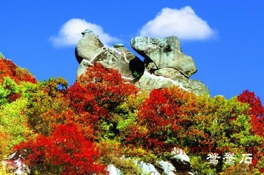 暑假到五岳寨旅游 石家庄到五岳寨旅游团 五岳寨一日游