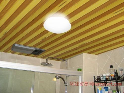 卫生间吊顶突破传统 更健康时尚。