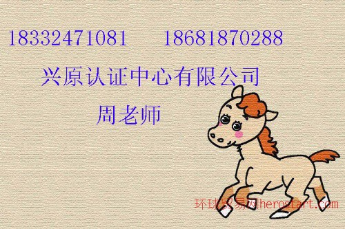 拉萨iso9000认证,西藏iso9000认证