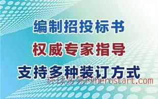文昌写的专业的招投标书的公司