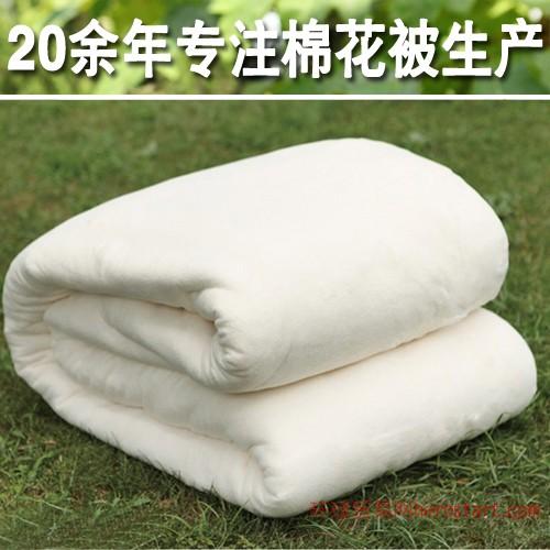 山东水思缘家纺棉花被厂家 供应被褥 被芯 被子