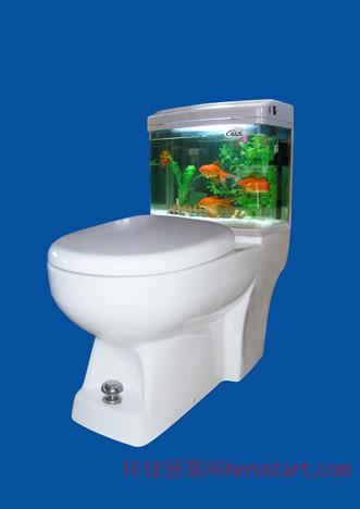 能养鱼的超节水马桶