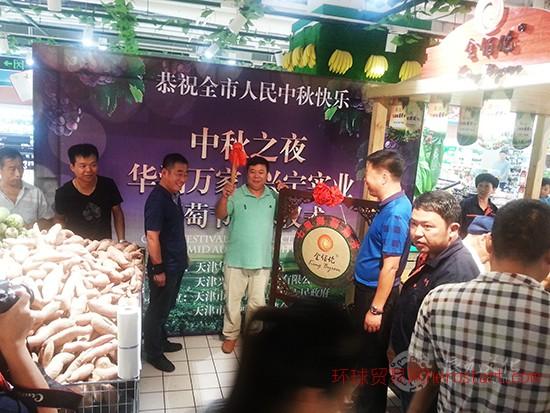 辰元文化展览展馆——七里海葡萄节