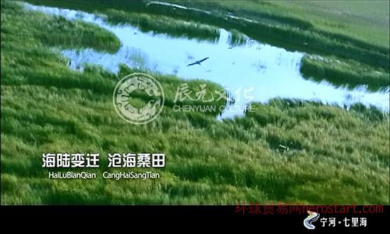 辰元文化媒体投放——七里海公益广告片