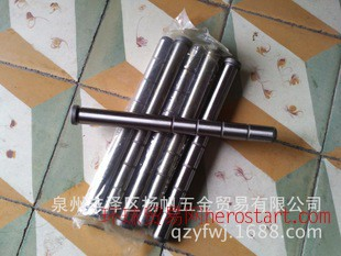 轴承钢直身导柱25×300 品质保证