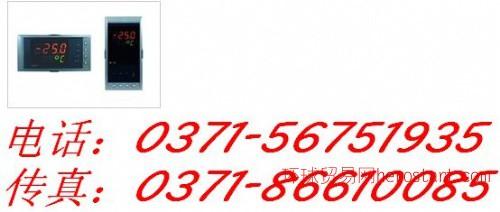 NHR-5710 温度巡检仪 香港虹润专利
