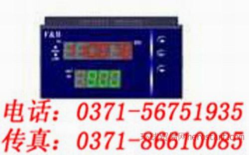 速度显示仪-XMS5000-价格低廉