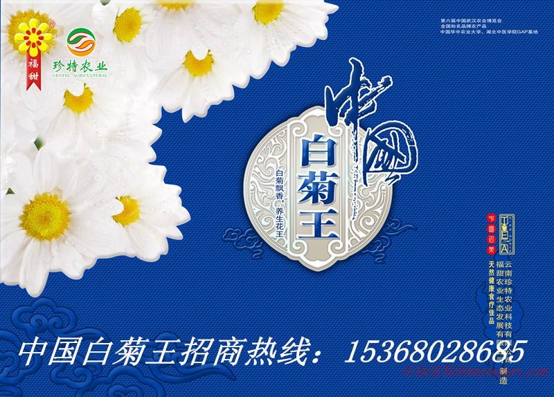 云南旅游礼品云南珍特农业菊花茶公司