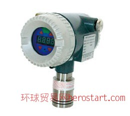 一氧化碳有毒气体探测器DAP32-12LC