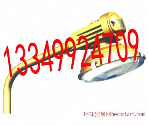 SBR1120免维护节能防爆道路灯