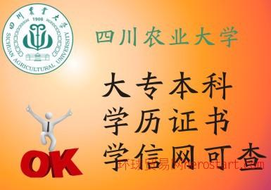 博识国际教育四川农业大学学历证书培训