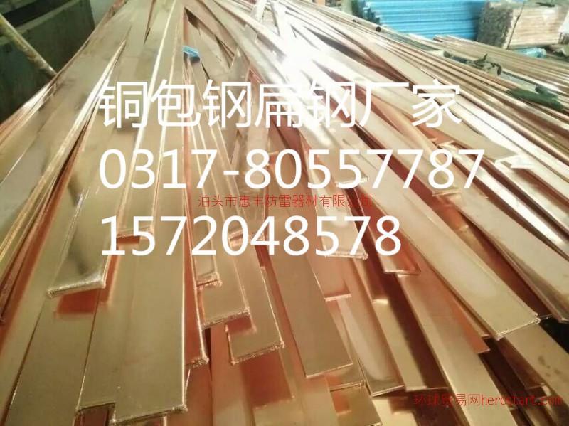 铜包钢扁线厂家价格  质量值得信赖
