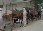 肉类加工设备/肉类酱卤加工设备/肉干加工设备