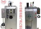 旭恩蒸汽锅炉40kg燃气锅炉品质保障食品加工设备首选