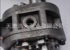 2CW 齿轮油泵为定制型齿轮泵