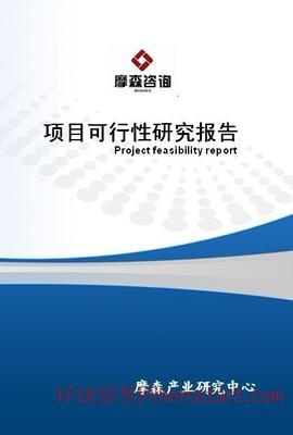 燃煤发电机组项目可行性研究报告