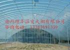 日光温室,春秋棚,蔬菜大棚,拱棚专业建造
