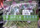 防雾袋膜 超市蔬菜金针菇防雾包装膜 PP防雾包装袋膜