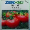 圣尼斯抗病毒番茄种子-欧贝