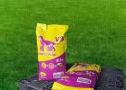 多种维生素矿物质狗粮天然美味狗粮宠物零食犬粮