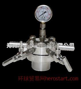 实验仪器GKC-0.5L型耐高压简易釜/微型反应釜/高压反应釜